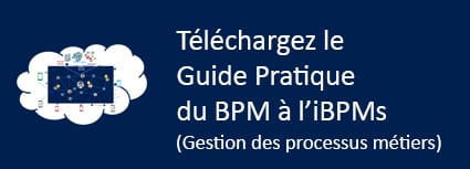 Guide pratique du BPM à l'iBPMs